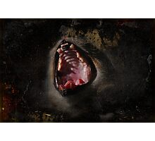 Scream!! Photographic Print
