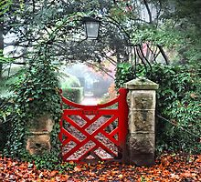 Bebeah Gate - Mt Wilson NSW Australia by Bev Woodman