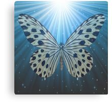 The butterfly flies Canvas Print
