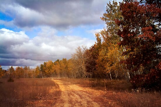 Autumn Trail by KBritt