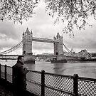 Enjoying the view - Tower Bridge - London - Britain by Norman Repacholi