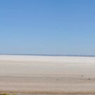 Journey to Lake Eyre #07 by HelenThorley