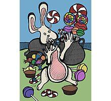 Teddy Bear And Bunny - Sugar Crash 2 Photographic Print
