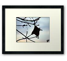 Autumn Charm Framed Print