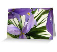 Karyn Crimmin's 'Blue Irises' Greeting Card