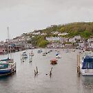 Looe Harbour by Imager