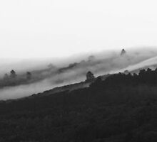 Fog Over Santa Cruz Mountains. by Igor Pozdnyakov