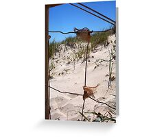 The Fence At The Beach 30 09 12 One Greeting Card