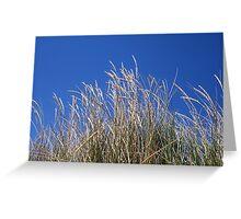 Beach Wheat Brighton/Trigg Beach Two Greeting Card