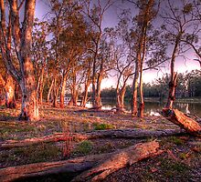 River Murray Sunset III - Renmark, South Australia by Mark Richards