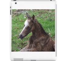 New Born Foal iPad Case/Skin