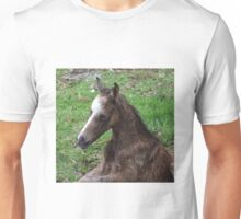 New Born Foal Unisex T-Shirt