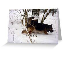 German Shepherd for calender 2013 e Greeting Card