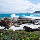 Squeaky Beach - Wilson's Promontory National Park by JohnnyBullen