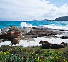 Squeaky Beach - Wilson's Promontory National Park by John Bullen