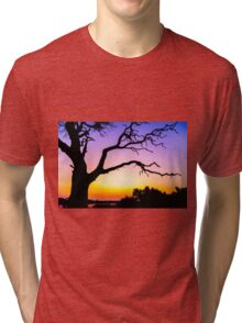 Tree At Sunset Tri-blend T-Shirt