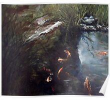Koi and 3 legged stone frog Poster