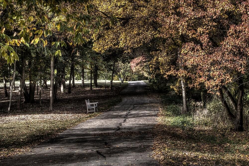 Stylized park by hugamikey