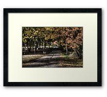 Stylized park Framed Print