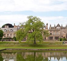 Newstead Abbey by Imager