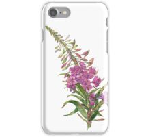 Willow-herb iPhone Case/Skin