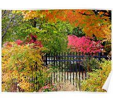 Autumn © Poster