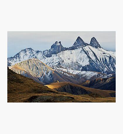 Autumn on Alpine needles Photographic Print