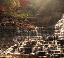 Albion Falls - Full Frontal Flow © by © Hany G. Jadaa © Prince John Photography