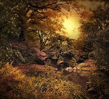 Autumn Twlight Garden by Jessica Jenney