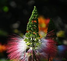 Weeds - Hierbajo by Bernhard Matejka