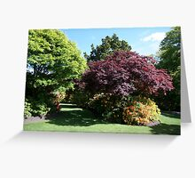 Shrubs and bushes in a garden  Greeting Card