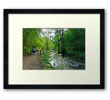 Gateway to Lover's Leap, Dovedale  Framed Print