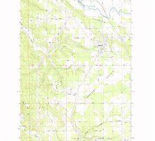 USGS Topo Map Washington State WA Napavine 242780 1985 24000 by wetdryvac