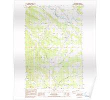 USGS Topo Map Washington State WA Napavine 242780 1985 24000 Poster