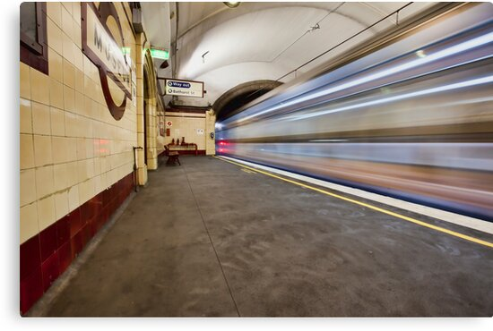 The Speed of Light by Malcolm Katon