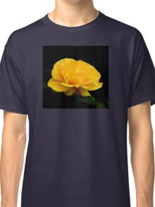Golden Yellow Rose Isolated on Black Background Classic T-Shirt