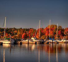 Buffalo Bay Marina by Thomas Young