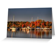 Buffalo Bay Marina Greeting Card