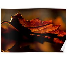 An Early Autumn Morning Poster