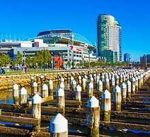 Etihad Stadium at Docklands - Melbourne, Victoria by sjphotocomau