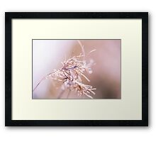 my pink ribbon Framed Print