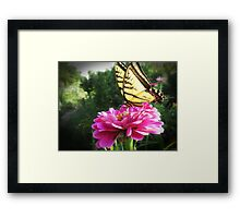 Flower and Butterfly Framed Print