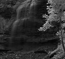Tiffany falls in infrared by Faan Kuypers