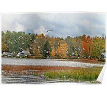 Lake Carmi Autumn 2012 Poster