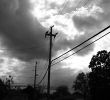 The Electrical Storm by Theodore Kemp
