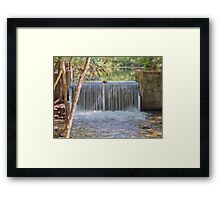 Althea Springs Framed Print