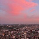 Pink Seattle by Robin Nellist