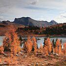 Autumn in high altitude II by zumi