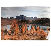 Autumn in high altitude II Poster