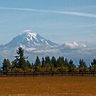 Mt. Rainier by Robin Nellist